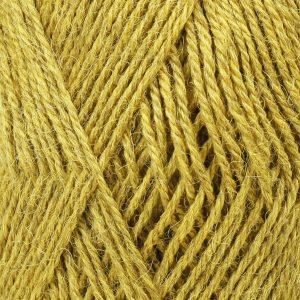 9029 wheat field